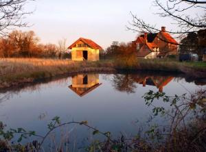 Suffolk Photo