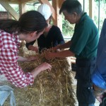 Barbara-checks-straw-passivhaus